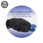 """In A Perfect World (Lab) 3.5"""" Button (10 pack"""