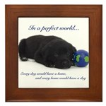 In A Perfect World (Lab) Framed Tile