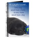 In A Perfect World (Lab) Journal