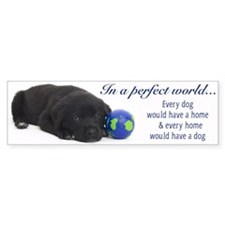 In A Perfect World (Lab) Bumper Bumper Sticker