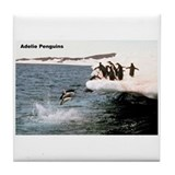 Adelie Penguins Tile Coaster