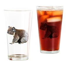 Australian Koala Photograph Drinking Glass