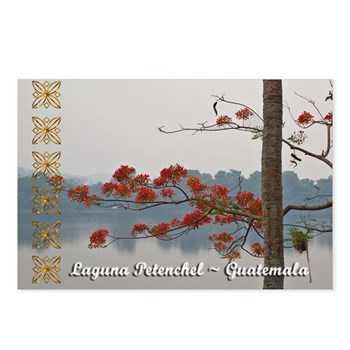 Laguna Petenchel Postcards