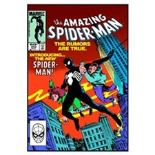 The Amazing Spider-Man (Introducing The New Spider