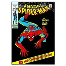 The Amazing Spider-Man (The Spider Or The Man?)
