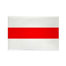 BNR Flag Rectangle Magnet (10 pack)