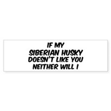 If my Siberian Husky Bumper Car Sticker
