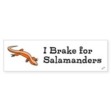 Cute Salamander Bumper Sticker