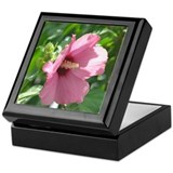 Rose of Sharon Keepsake Box
