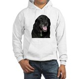 Faithful Friend Hoodie