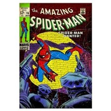 The Amazing Spider-Man (Spider-Man Wanted!)