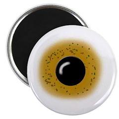 Brown Eyeball Magnet