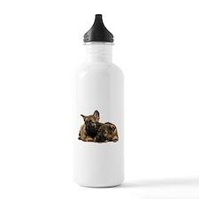 German Shepherd Siblings Water Bottle