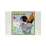 Bantam Chickens Rectangle Magnet (10 pack)