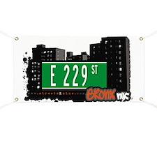 E 229 St Banner
