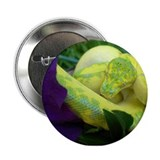 High Yellow Green Tree Python Button