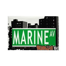 MARINE AV, BROOKLYN, NYC Rectangle Magnet (100 pac
