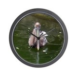 brown pelican 2 Wall Clock