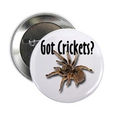"Tarantula Got Crickets 2.25"" Button (100 pack)"