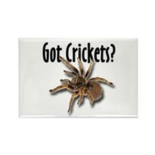 Tarantula Got Crickets Rectangle Magnet