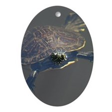 Aquatic Turtle photo Oval Ornament