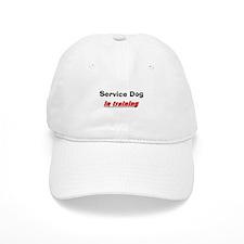 service dog 2 Baseball Baseball Cap