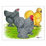 Feather-legged Bantams Small Poster