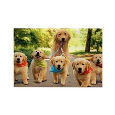 Mommy Walking Puppies Rectangle Magnet