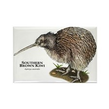 Southern Brown Kiwi Rectangle Magnet