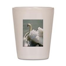 Beautiful white swan Shot Glass