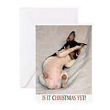 RAT TERRIER Greeting Cards (Pk of 10)