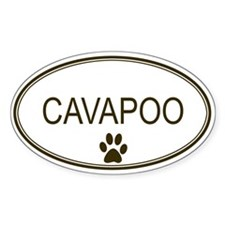 Oval Cavapoo Oval Decal