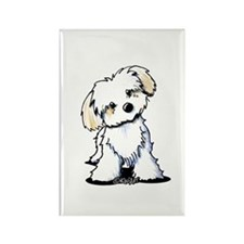 Havanese Sweetie Rectangle Magnet