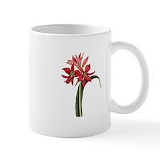 Amaryllis Aulica Small Mugs