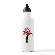 Amaryllis Aulica Water Bottle