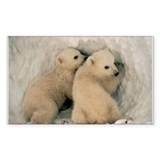 Polar Bear Cubby Decal