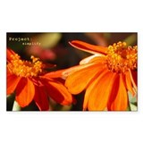 Orange Flowers Simplify Decal