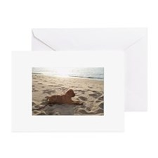 Bullmastiff Greeting Cards (Pk of 10