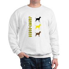 Vertical Labs4rescue Sweatshirt
