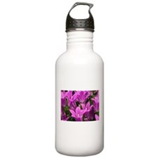 Close Up Of A Field Of Beautiful Purple Flowers Wa