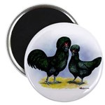 Crevecoeur Chickens Magnet
