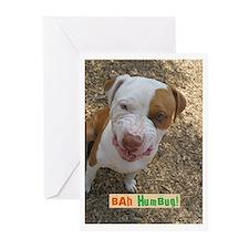 Bah Humbug! Greeting Cards (Pk of 10)