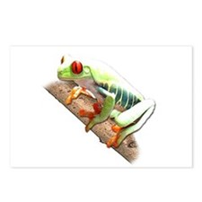 Red Eyed Tree Frog III Postcards (Package of 8)