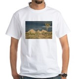 Joshua Tree Sunset Shirt