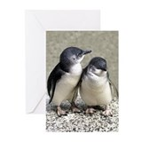 Penguin Buddies Greeting Cards (Pk of 10)
