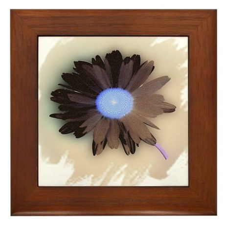 Country Daisy Framed Tile