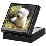 Bichon in Autumn Leaves Keepsake Box