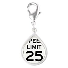 Speed Limit 25 Sign Charms