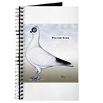 Polish Shortface Pigeon Journal