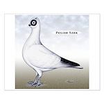 Polish Shortface Pigeon Small Poster